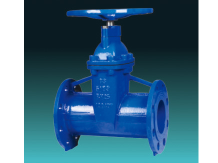 BS5163 Type A DI resilient seated gate valves