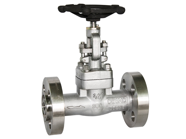 Inconel CW6MC GATE VALVE