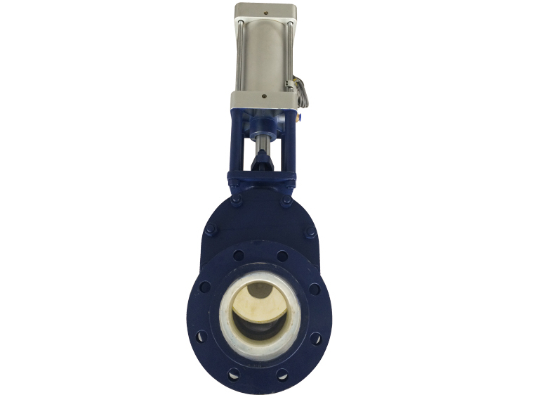 cermaic double disc gate valve