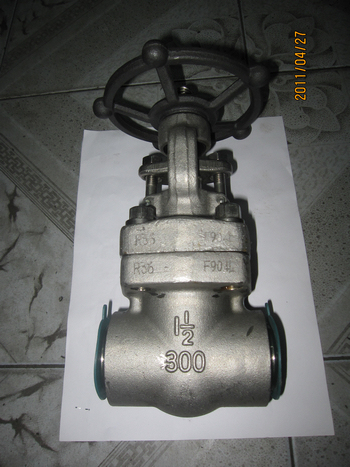 300lbs 1 1/2 in 904L forged gate valves
