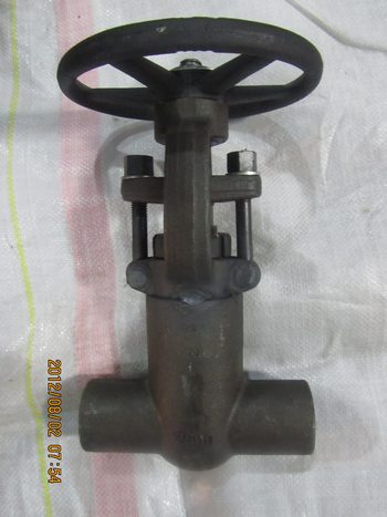 2500lbs SW 1in F22 pressure seal forged gate valves