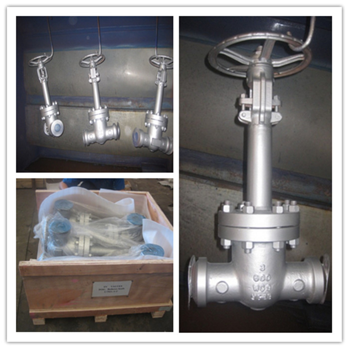 600LBS BW ends 3in WC9 bellows seal gate valves