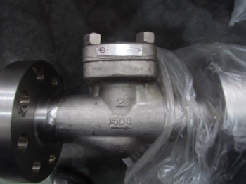 1500lbs RF 2in F316 Cryogenic lift type check valves