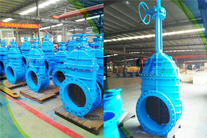 DI resilient seat gate valve