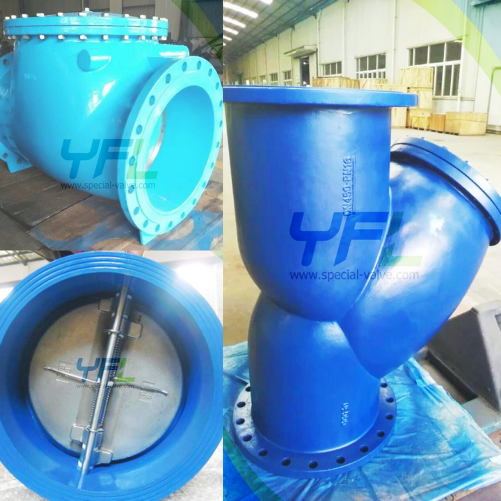 dual plate check valve, strainer