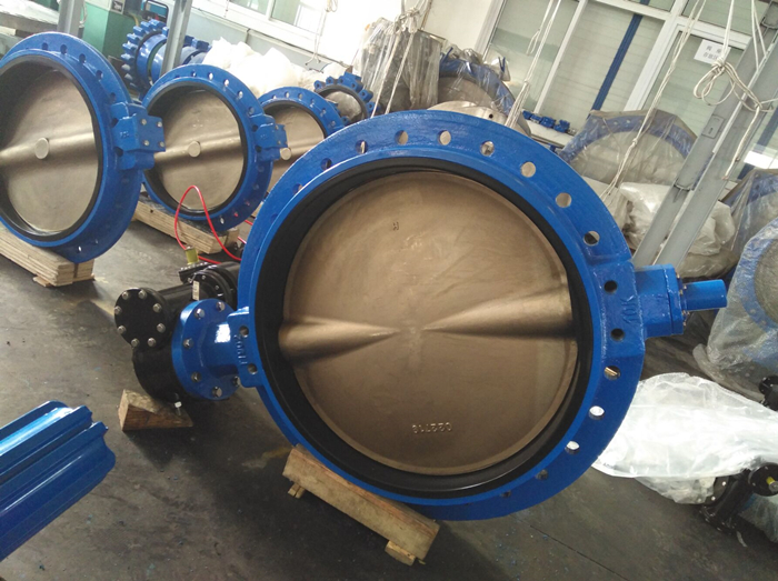 C95800 Butterfly valve for seawater