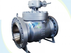 Stainless steel Reduced bore Top entry ball valves