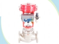 Cryogenic Top Guided Single Seat Globe Control Valve