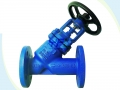 Jacketed Bellows Seal Y Type Globe Valve
