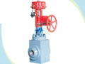 Power Plant High Pressure Difference Control Valve