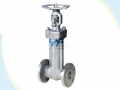 Forged Steel Extended Stem Bellows Seal Gate Valve