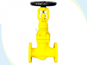 Bellows seal globe valve for chlorine