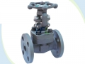 API 602 Flanged Forging Steel F904L Gate Valve