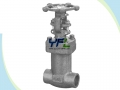 BS 1873 Extended Stem LCB LPG Low Temperature Globe Valve