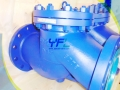 API 6D Full Opening Bolted Cover C5 Swing Check Valve