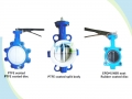 Lugged Concentric Double Shaft Butterfly Valve Without Pin