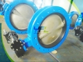 Flanged Center Line Rubber Lined Butterfly Valve