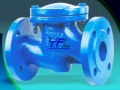 BS 5153 DI Swing Check Valve With Lever And Weight