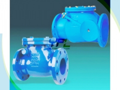 BS 5153 cast iron swing check valve