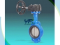 Wafer Center Line Fully F46 Coated Butterfly Valve