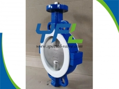 CF8M Disc PTFE Lined butterfly valve