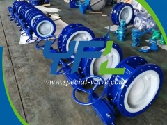 Flanged PFA Lined butterfly valve