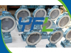 Bare stem FEP Lined butterfly valve