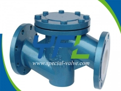 Best WCB Body FEP Lined Lift Type Check Valve