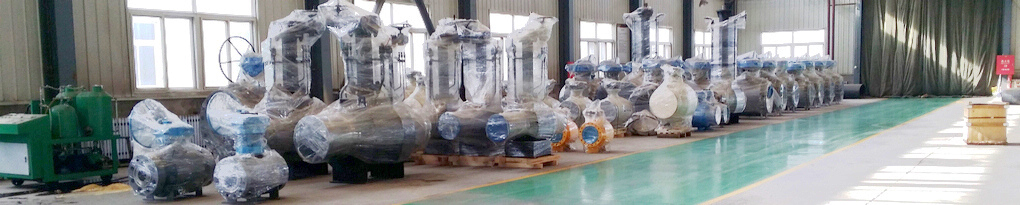 Fully welded ball valves packing