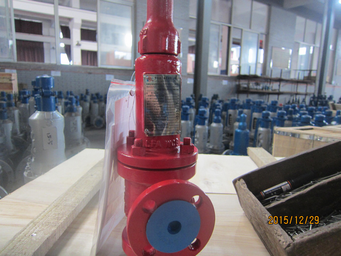 150lbs 1 in flanged WCB Spring Type Safety Valve DHL to Mexico for USA customer