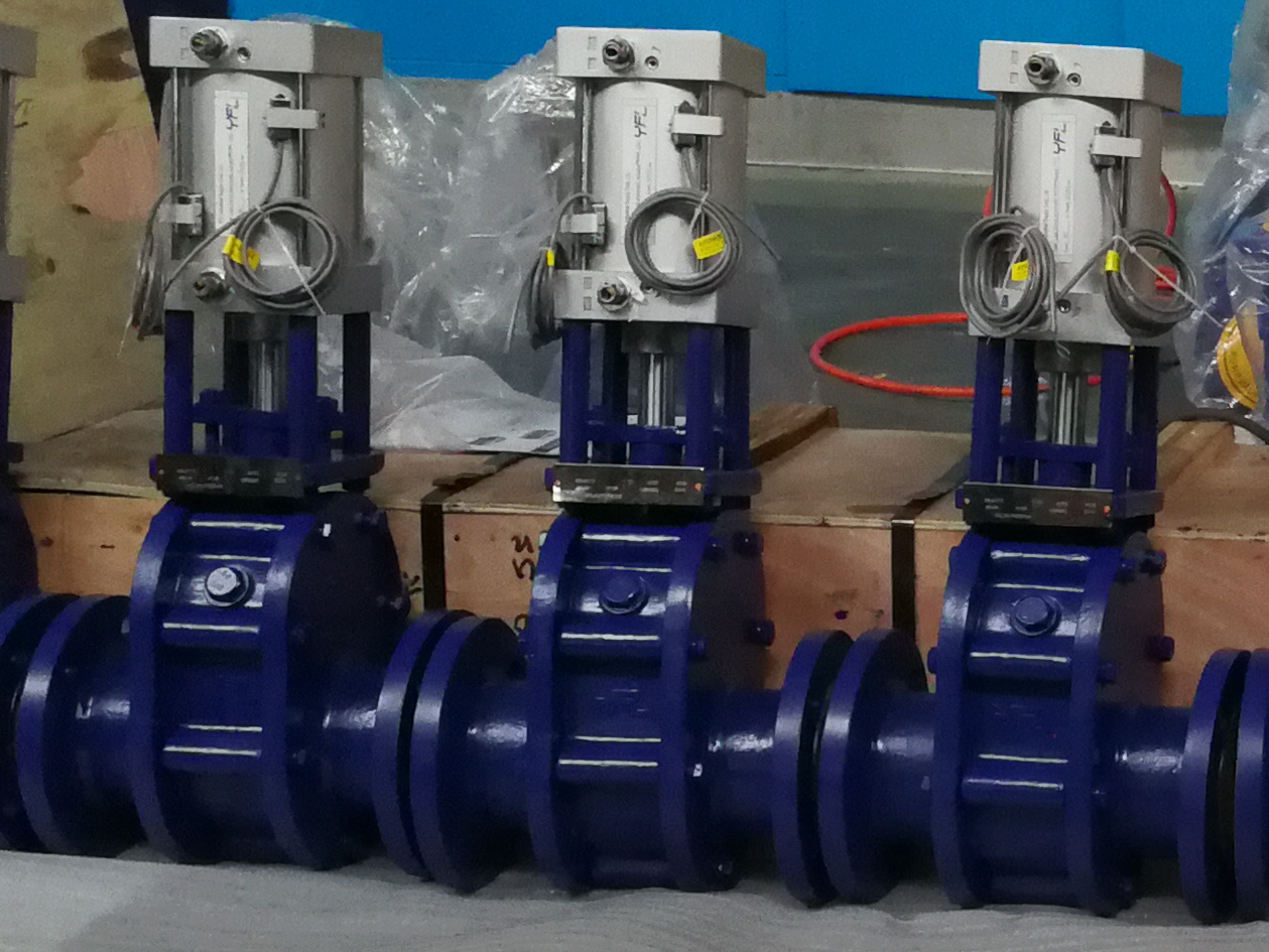 Ceramic double disc gate valves to Philippine again