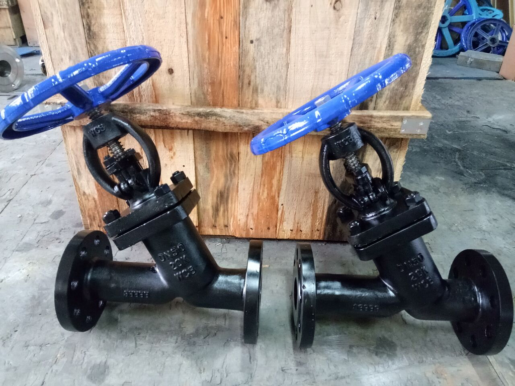 JIS Y Type Globe Valves Exported to Singapore by TNT